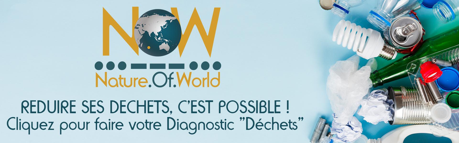 Diagnostic_Dechets