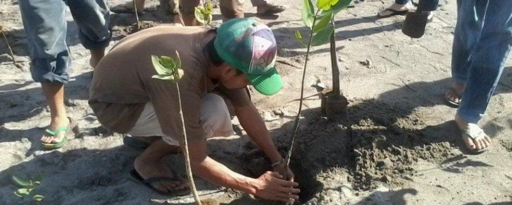 [ Ulyces ] Aux Philippines, tous les étudiants doivent planter 10 arbres avant leur diplôme